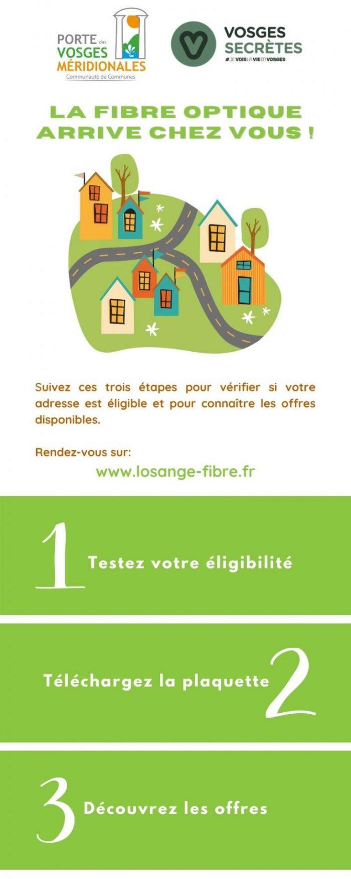 Infographie fibre optique